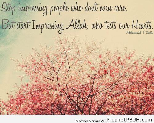 Start Impressing Allah - Photos of Flowers