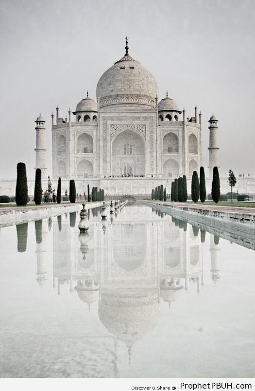 Taj Mahal (Islamic Architecture) - Agra, India -