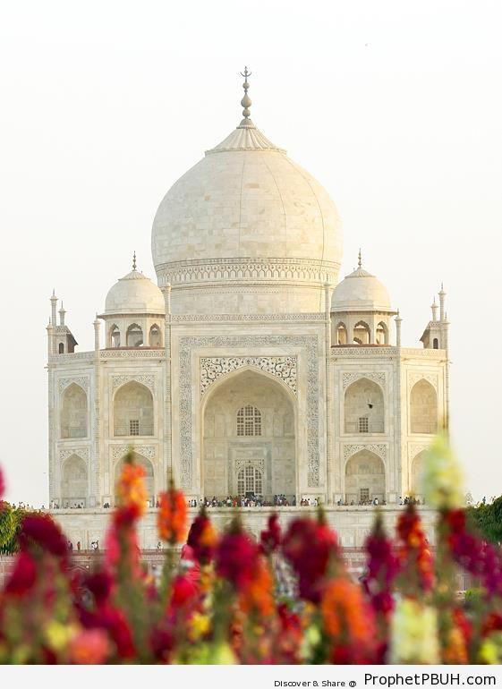 Taj Mahal (Islamic Architecture) - Agra, India