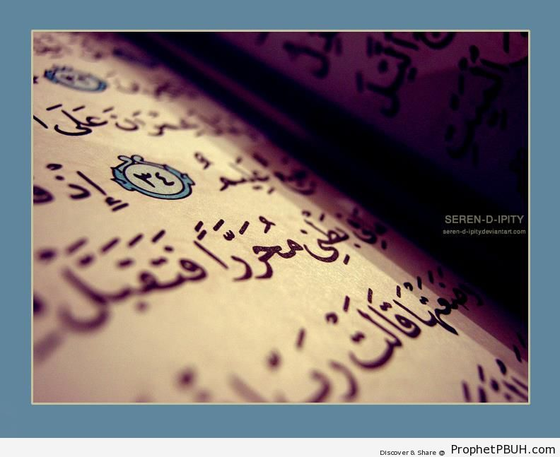 The Speech of Mary-s Mother With God (Surat Al Imran) - Islamic Quotes
