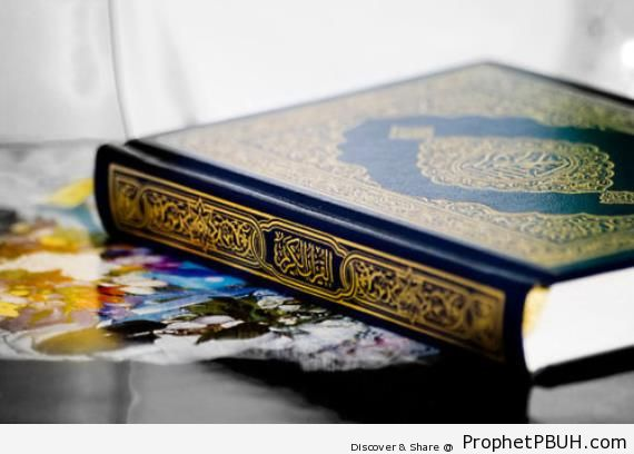 The User-s Manual for Life on Earth - Mushaf Photos (Books of Quran)