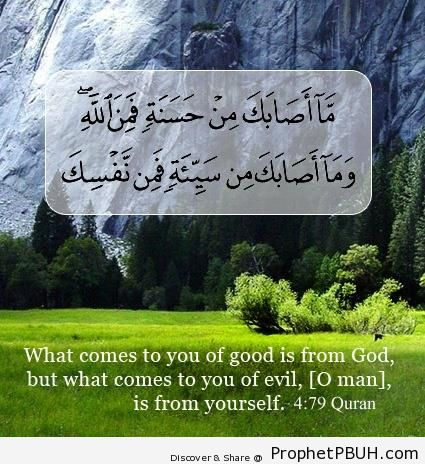 Whatever Comes to You of Good (Surat an-Nisa) - Photos