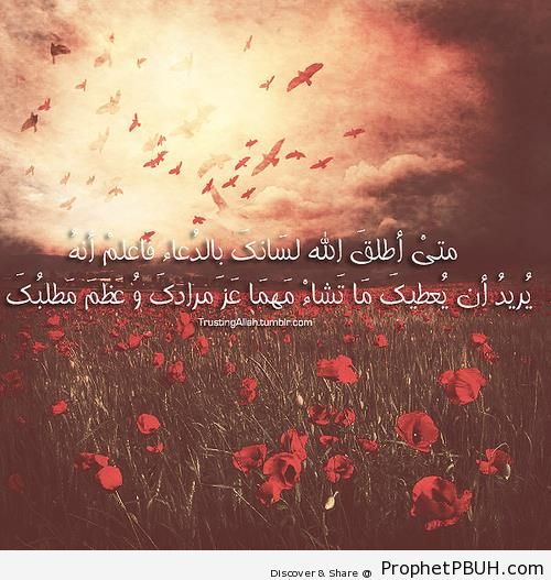 Whenever Allah Lets You Pray - Islamic Quotes About Dua