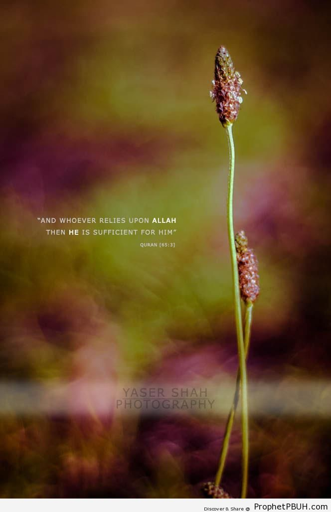 Whoever Relies Upon Allah (Quran 65-3) - Islamic Quotes About Tawakkul (Complete Reliance Upon Allah)