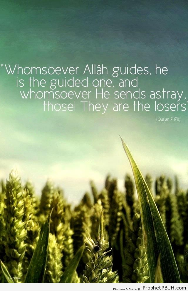 Whomsoever Allah Guides (Quran 7-178) - Photos