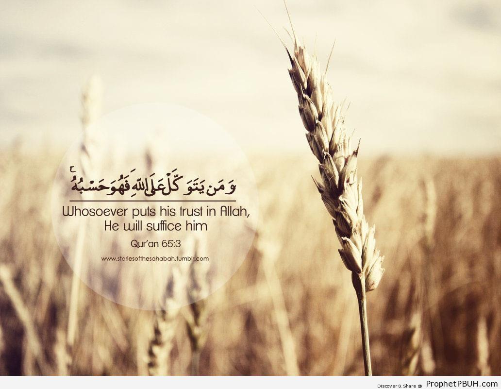Whosoever Puts His Trust in Allah (Quran 65-3) - Islamic Quotes
