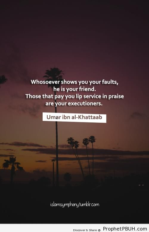 Whosoever shows you your faults - Islamic Quotes