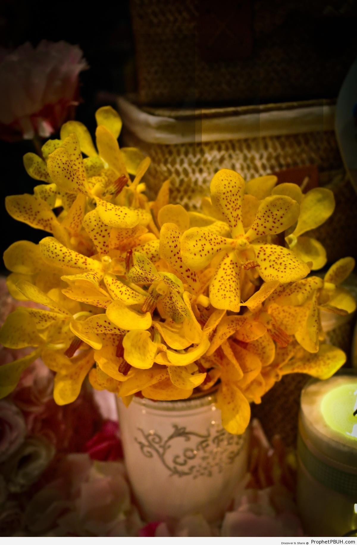 Yellow Flowers in Vase (Royalty Free) - Artist- Cloud -