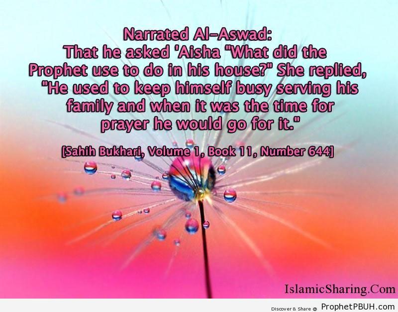 sahih bukhari volume 1 book 11 number 644