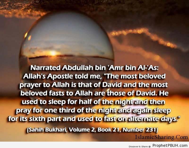 sahih bukhari volume 2 book 21 number 231