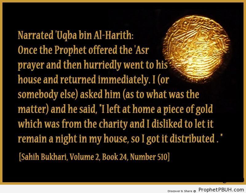 sahih bukhari volume 2 book 24 number 510