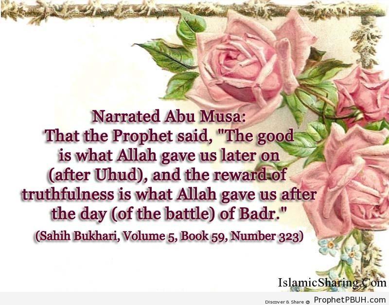 sahih bukhari volume 5 book 59 number 323