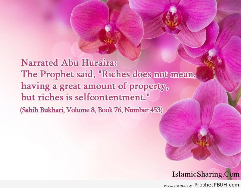 sahih bukhari volume 8 book 76 number 453