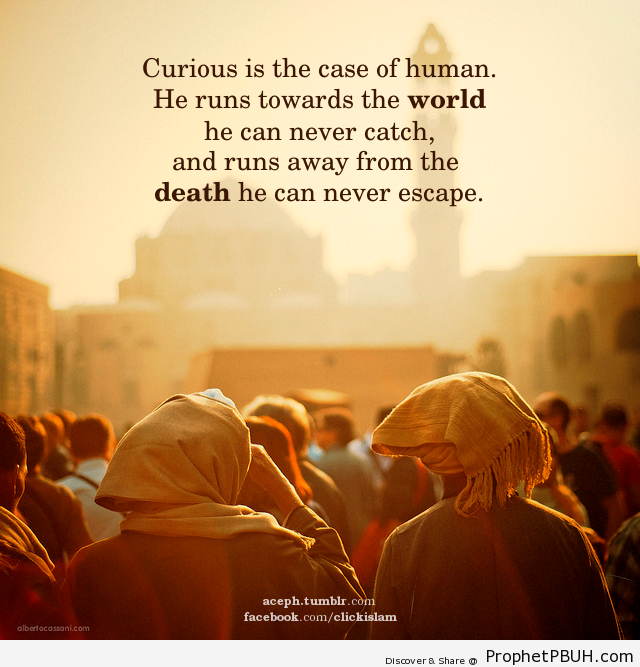 Curious is the case of human. He runs... - Islamic Quotes, Hadiths, Duas