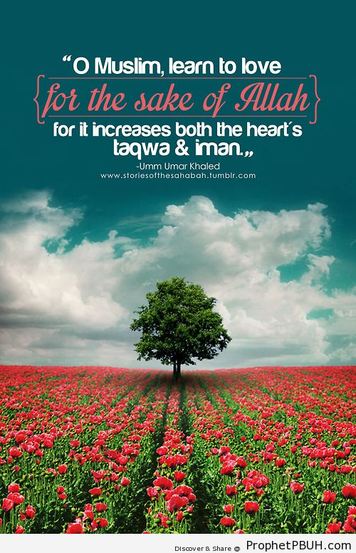 Friends are but gifts from... - Islamic Quotes, Hadiths, Duas