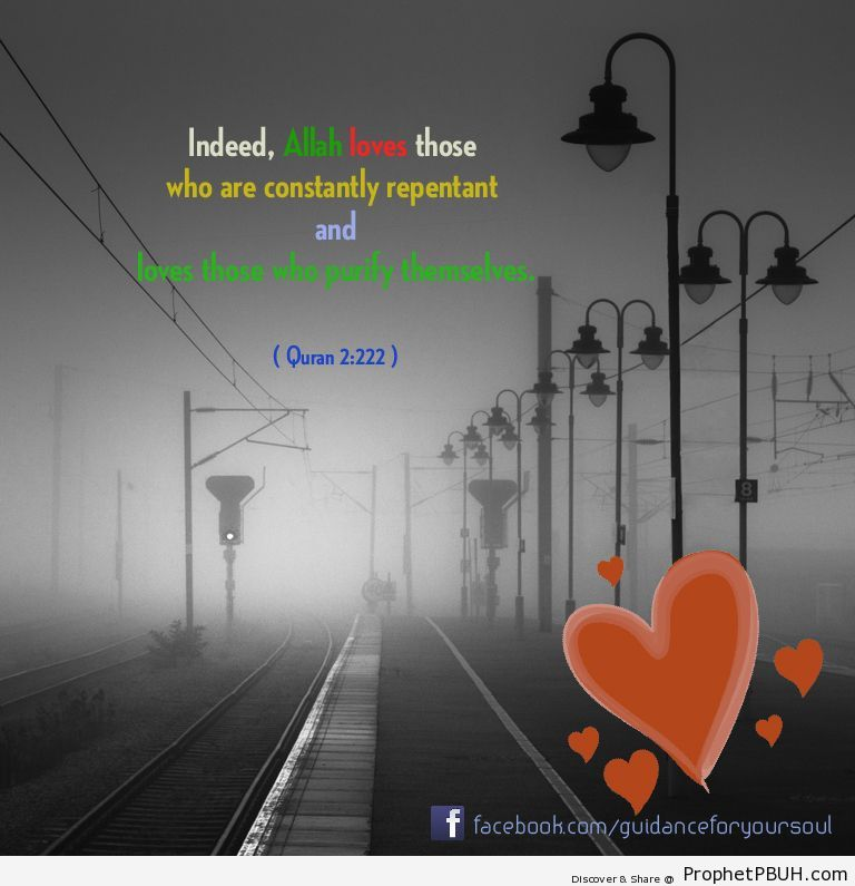 Indeed, Allah loves those who are constantly... - Islamic Quotes, Hadiths, Duas