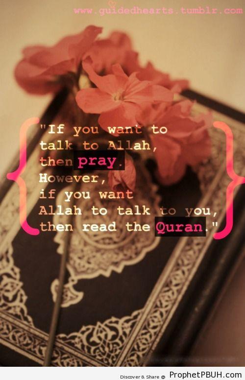 Pray & read Quran - Islamic Quotes, Hadiths, Duas
