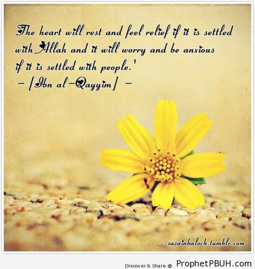 Relief of the heart - Islamic Quotes, Hadiths, Duas