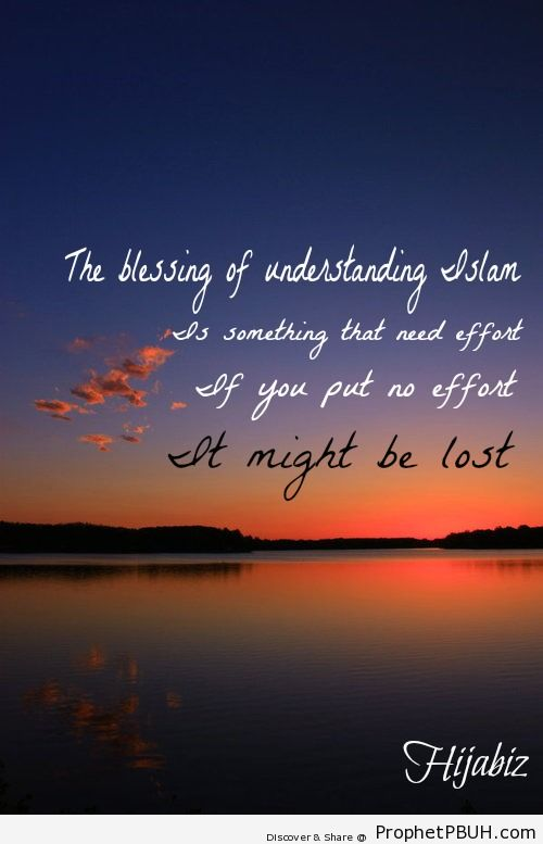 The blessings of understanding Islam... - Islamic Quotes, Hadiths, Duas