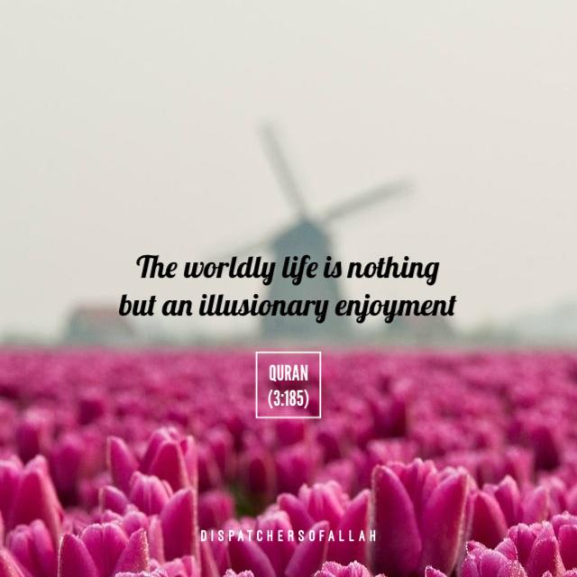 Quranic Verse on Worldy Life