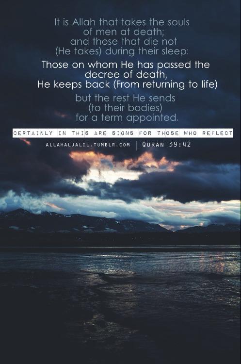 Quran 39:42 Verse