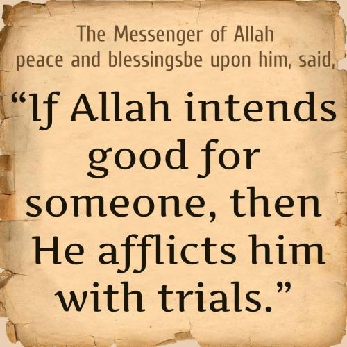 Prophet PBUH quote