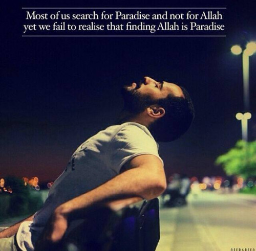 finding Allah is paradise