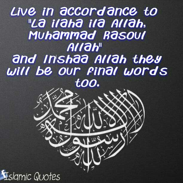 The best life insurance policy is 'lā ʾilāha ʾillā-llāh, muḥammadur rasūlu-llāh'. Once you're gone, the payout on the other side is huge!