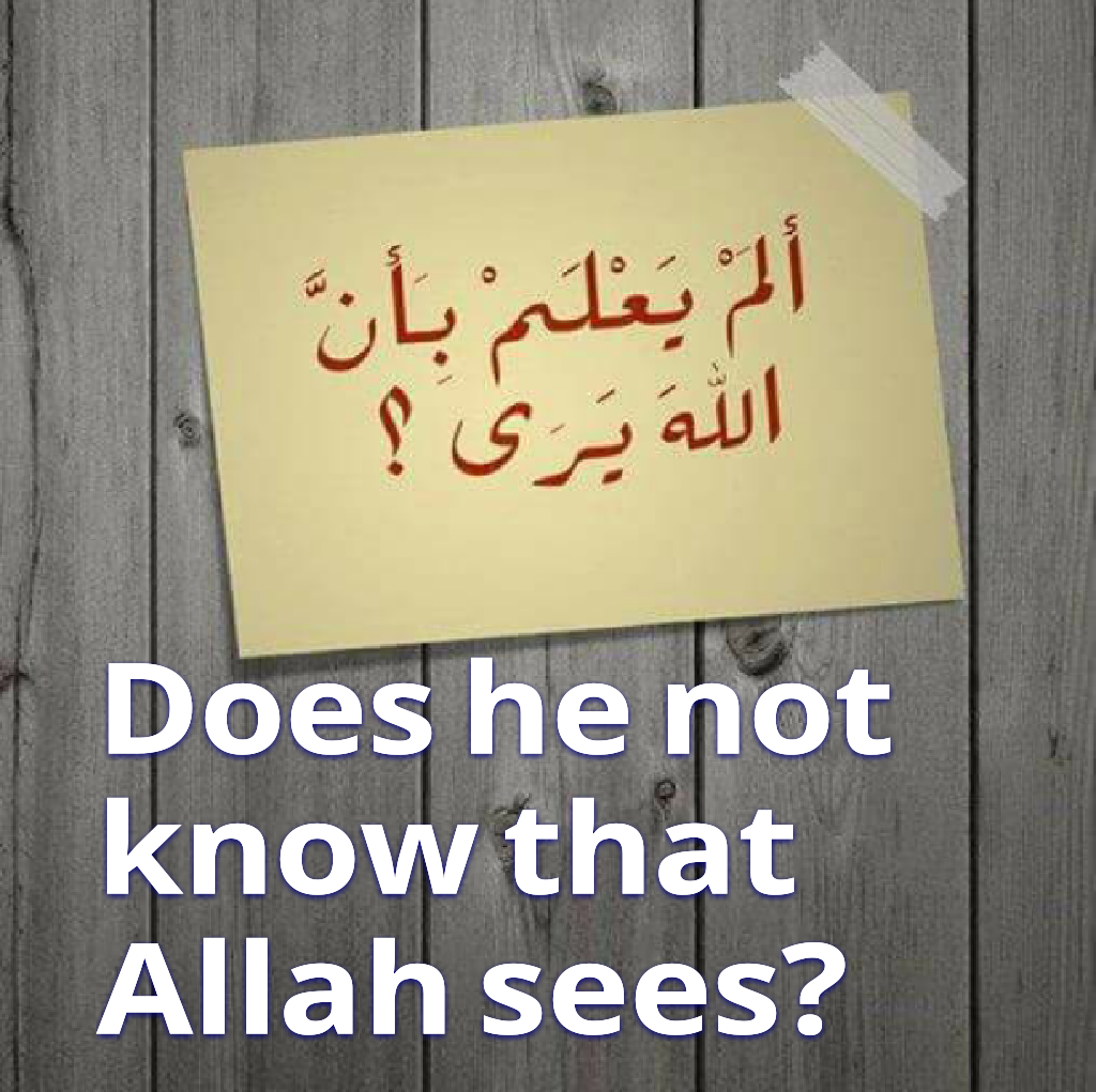 Does he not know that Allah sees?