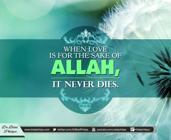 Love never dies when its for Allah's sake