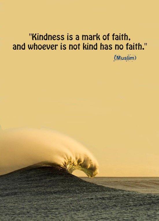 Kindness is a mark of faith. Prophet PBUH