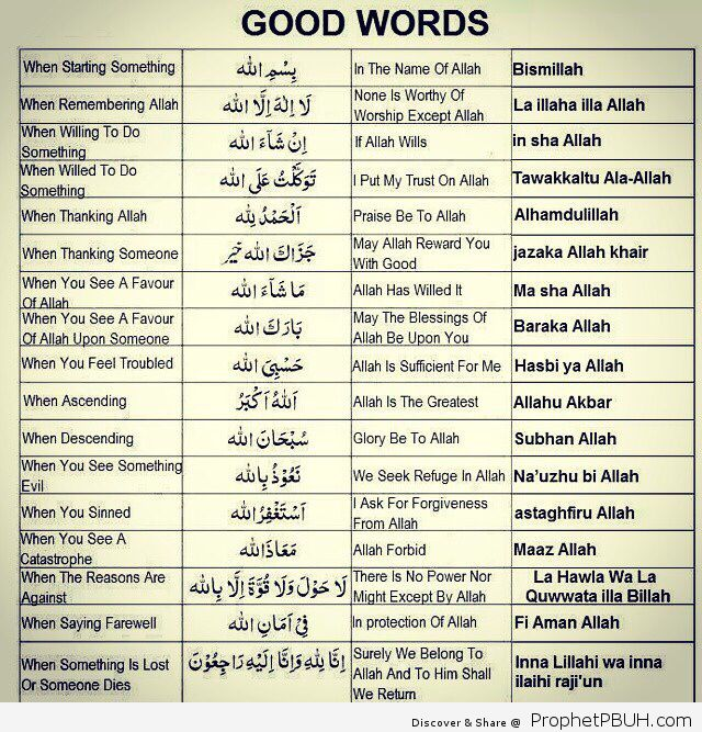 DesertRosegood words Learn the Holy Quran Online from the well being of your home