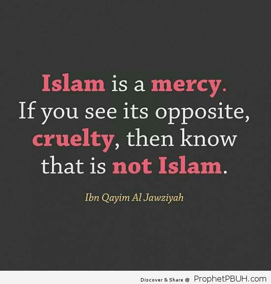 Islam is a mercy If you see its opposite cruelty then know that is not Islam