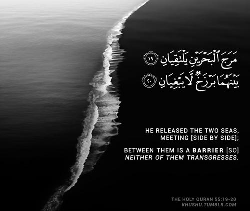 Subhan Allah - Beautiful Quran Quote